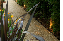 3 Practical Ways to Light Up Your Landscape with Spice